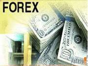 Обучение одной из лучших интернет торговли (Forex)